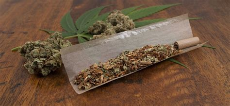 How To Make A Blunt Out Of Paper - difference joint blunt and spliff zamnesia