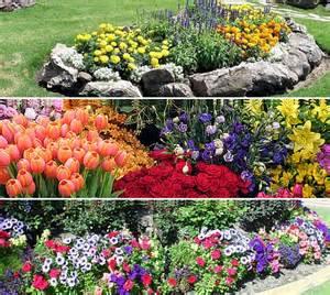 147 flower gardening ideas that will transform your