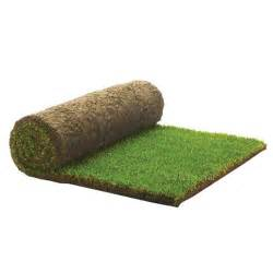 Home Interiors Brand rolawn medallion grass turf roll 1m2 wickes co uk