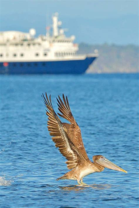 Giveaways Aaacarolinas Com - get onboard costa rica adventure cruise a natural high getting on travel
