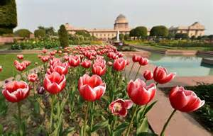 Delhi Flower And Garden Welcome To The President S Majestic Mughal Garden Rediff India News