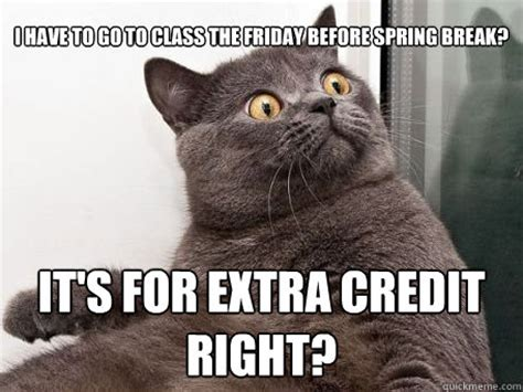 Spring Break Meme - i have to go to class the friday before spring break it s