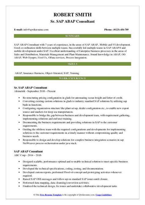 sap technical consultant cv