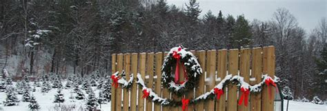 new hshire vermont christmas tree association farm