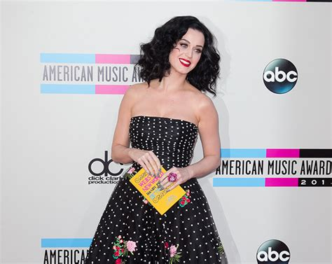 biography of katy perry book le katy biography