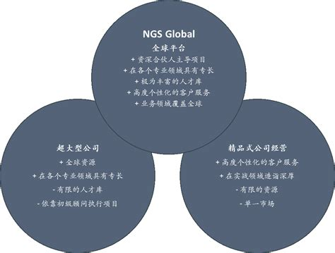 venn diagram philosophy ngs global 经营理念