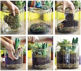 how to make a terrarium palmers garden centre
