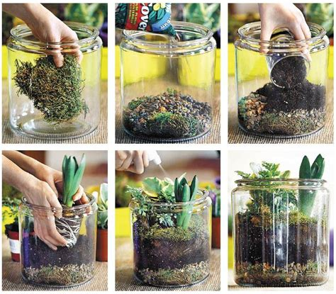 Make Plant - how to make a terrarium palmers garden centre