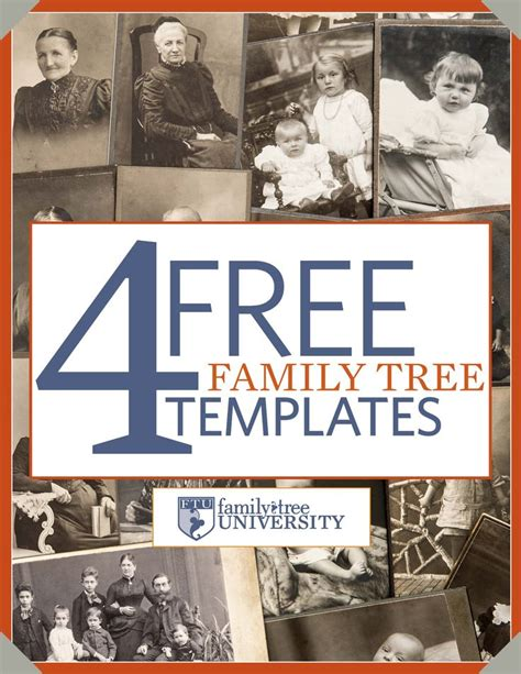 family tree book template 1000 images about family tree on genealogy