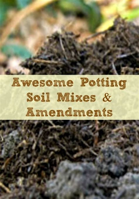 Awesome Potting Soil Mixes And Amendments For Your Garden Amending Soil For Vegetable Garden