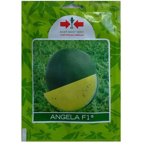 Jual Bibit Semangka Kuning jual benih semangka kuning angela f1 80 biji panah merah