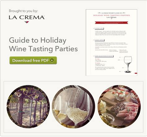 the new wine a genuinely helpful guide to everything you need to books wine tasting