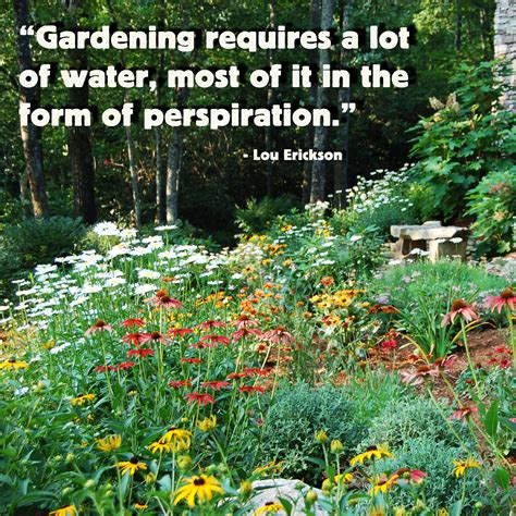 Vegetable Garden Quotes Gardening Quotes Quotesgram