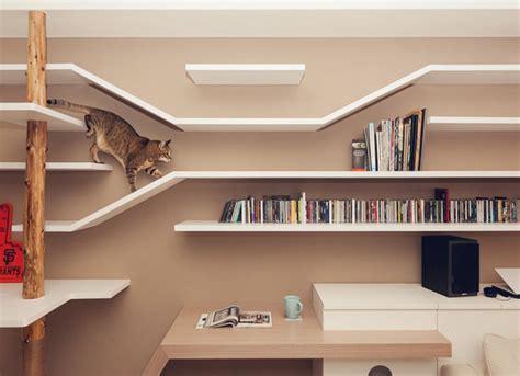 cat house  book storage