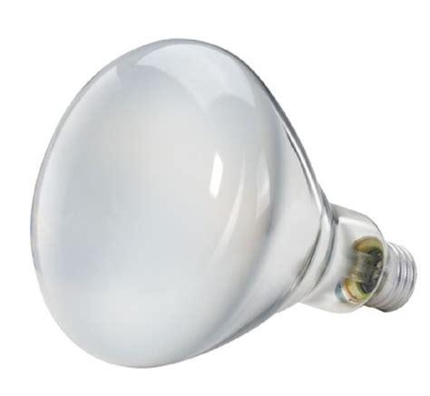 Lu Neon Philips 40 Watt 2013 philips 139279 soft white 65 watt br40 indoor flood light