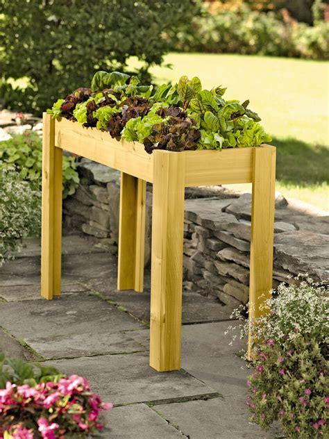 elevated salad bar garden cedar salad planter raised bed