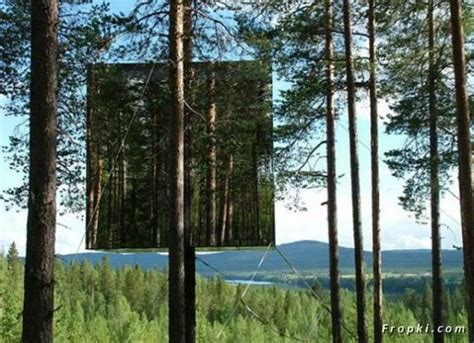 invisible tree almost invisible mirrored tree house