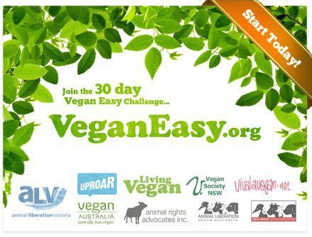 the five day veggie plan books 30 day vegan meal plans my husband s a vegetarian