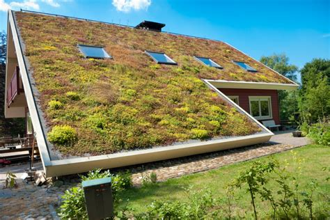 prijs dakbedekking dakkapel soorten dakbedekkingen voor hellende en platte daken