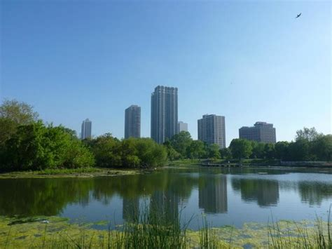 city of lincoln park lincoln park picture of lincoln park chicago tripadvisor