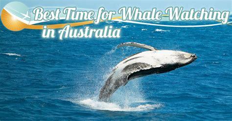 australia australia vacations travel packages tours