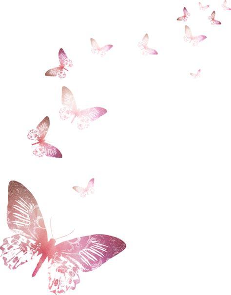 imagenes de invitaciones mariposas mariposas para invitaci 243 nes imagui