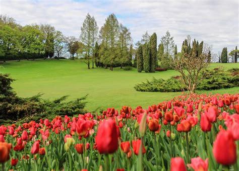 foto parco giardino sigurt 224 a valeggio sul mincio info