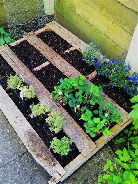 wood pallet wonders diy projects for home garden holidays and more books 25 diy pallet garden projects pallet furniture plans