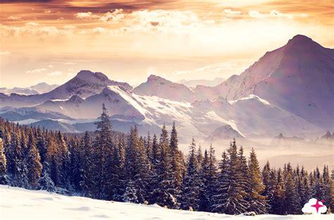tete de lit montagne t 234 te de lit montagne enneig 233 e textilvision