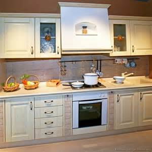 Whitewashed Kitchen Cabinets Pictures Of Kitchens Traditional Whitewashed Cabinets Kitchen 4