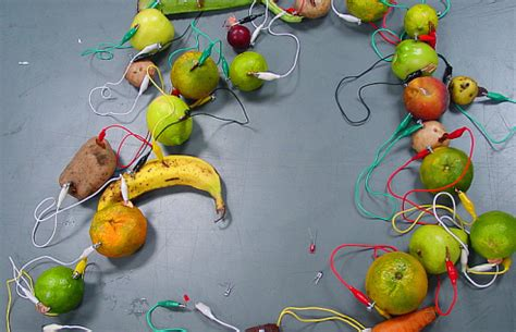fruit electricity could energy efficiency be a lemon two tips to make sure