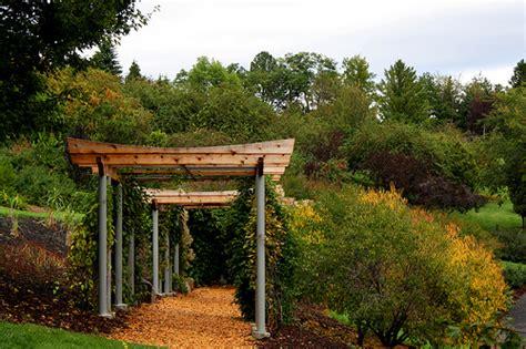 Garden Arbor Definition Pergola Definition Meaning