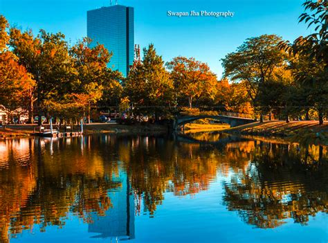 boston colors fall colors in boston new today