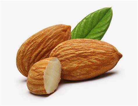 Minyak Almond Asli sembilan manfaat nutrisi kacang almond yunani obat sakit