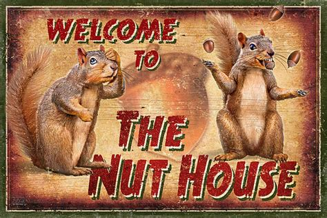 nut house nut house 2 by jq licensing