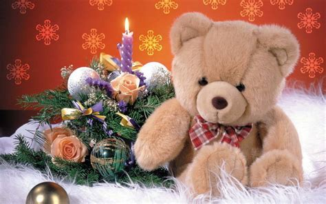 what is a teddy lovely and beautiful teddy wallpapers allfreshwallpaper