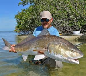 photos of the day personal best redfish orvis news