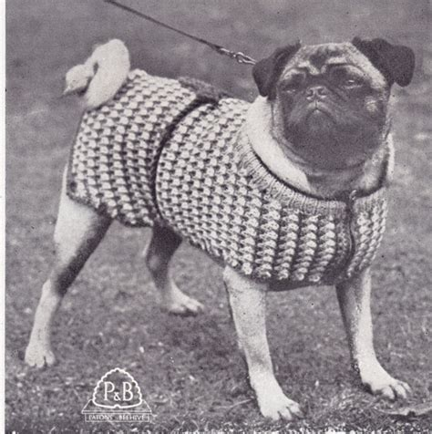 pug jumper knitting pattern knitted pug sweater pattern sweater