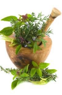 Chinese Herbal Medicine Uk » home remedies news