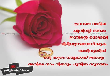 love themes malayalam love of photo red roses red roses greetings love