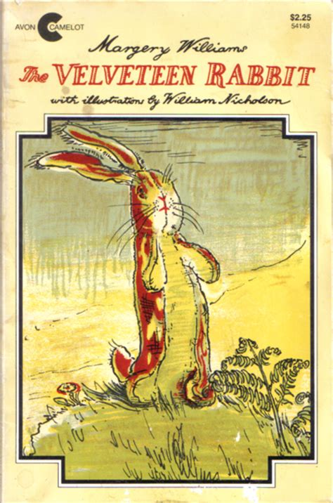 becoming real harry potter and the velveteen rabbit
