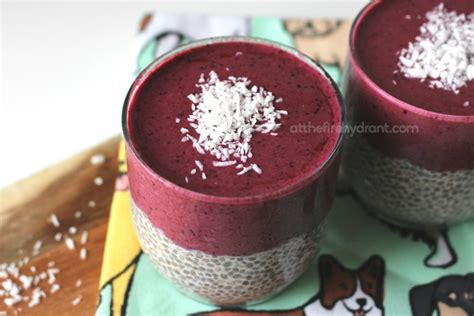 can dogs eat guava guava berry chia pudding smoothie recipe at the hydrant