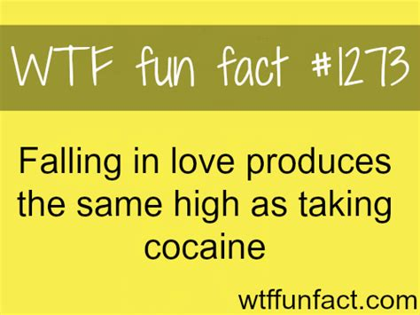 20 interesting facts about love funny love facts for all love facts more of wtf facts are coming here