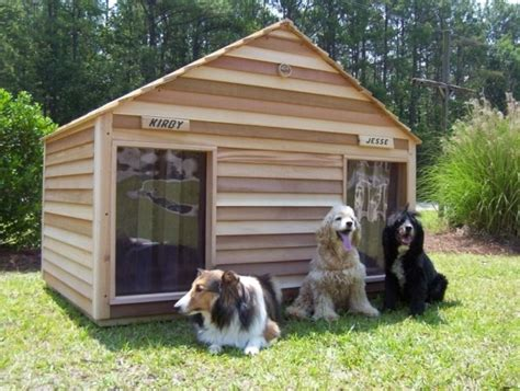 cani da giardino casette per cani casette da giardino casette per cani