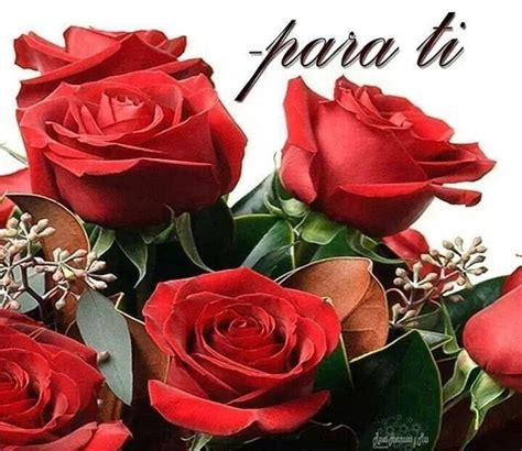 imágenes rosas para ti para ti estas bellas rosas de amor rosas para el corazon