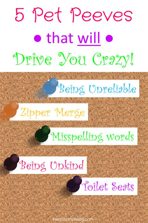 pet peeves 5 pet peeves that will drive you crazy keep it simple diy