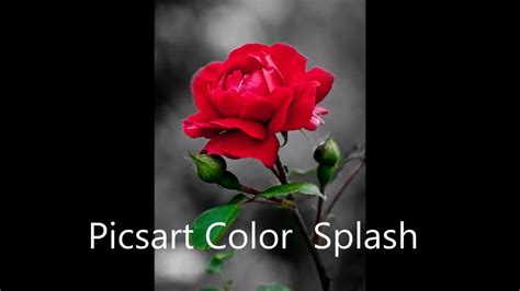 picsart tutorial color splash picsart editing tutorial how to make color splash youtube