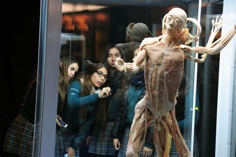 muestra bodies cuerpos humanos reales en santiago santo tomas en linea
