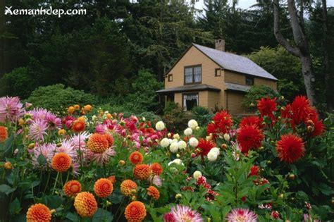 images of beautiful flower garden beautiful flower gardens photos garden picturess