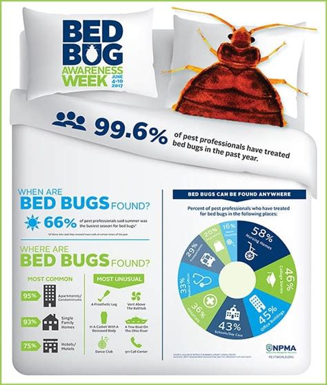 bed bug exterminator detroit feedspot rss feed